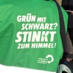 gruen_schwarz